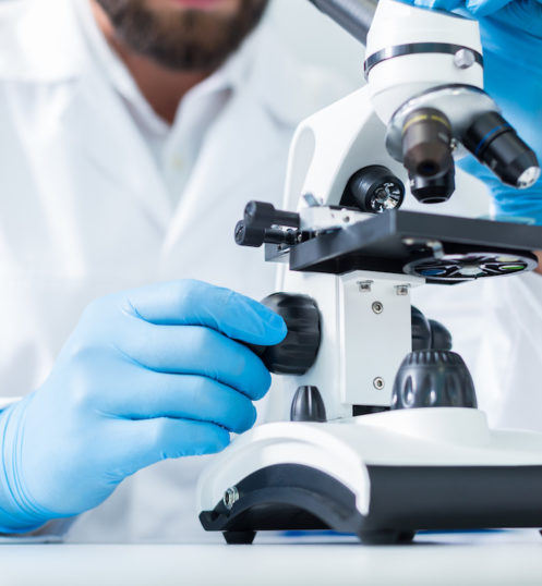 Laboratory equipment. Close up of a professional microscope being used for scientific research in the lab